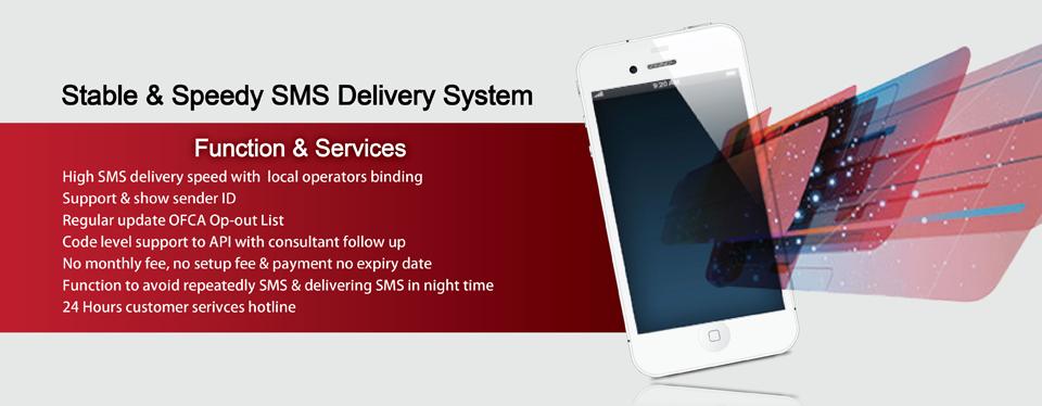 Virtual Mobile Number (VMN)、SMS、WebSMS、Web SMS、Bulk SMS